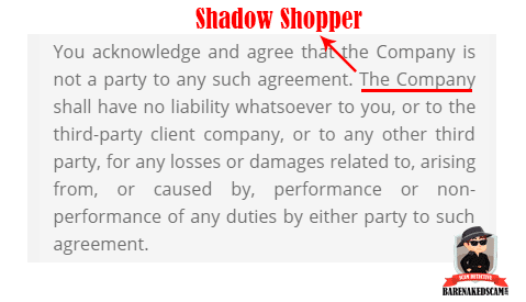 Shadow Shopper Scam - Terms of Use