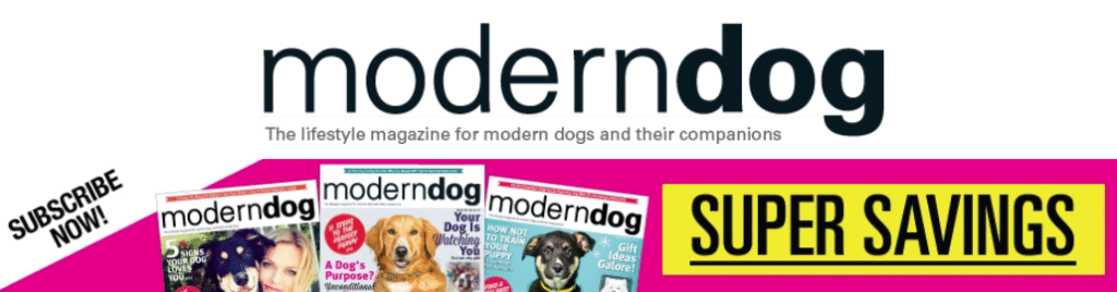 Best Recurring Affiliate Programs - moderndog