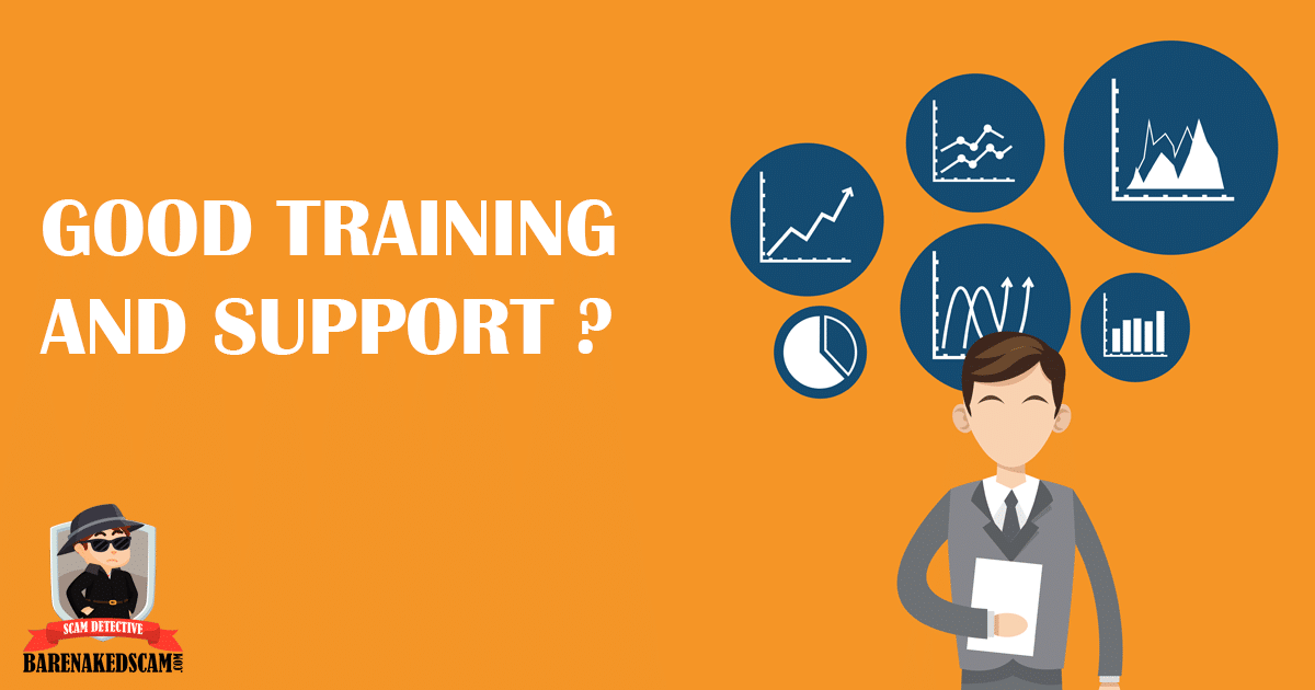 Does Vector Marketing Provide good training and support?